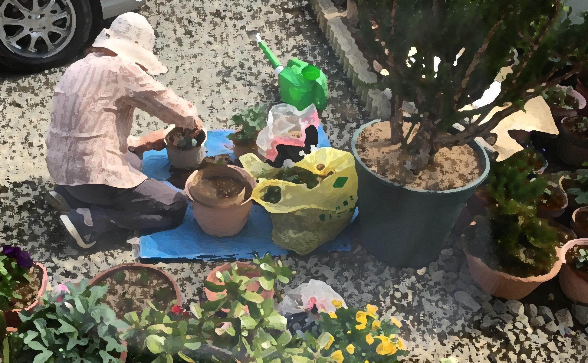 おばあちゃんの庭仕事-2018年
